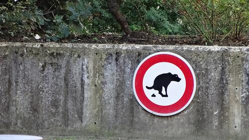ベルギー標識