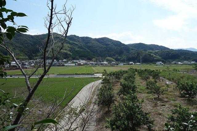 弁天山からの眺め