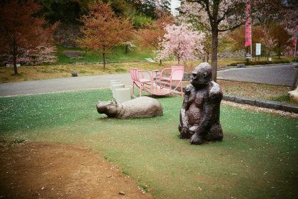桜とゴリラとカバ